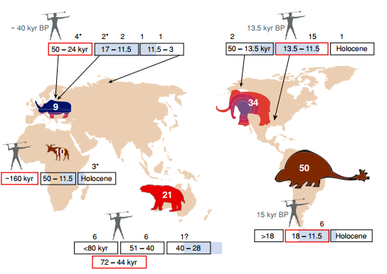 Bare with, this is perhaps the most difficult graph to explain. Basically the red box represents when modern humans arrived at various places, the blue bit represents climate change. The numbers above these time lines refer to when x number of species of megafauna went extinct. Finally, based on all this, the colour of the picture of megafauna represents