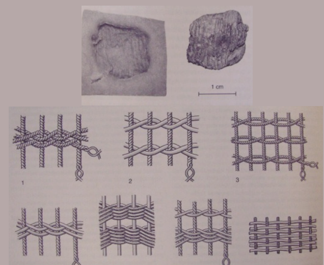 Some of the impressions on clay from Pavlov. A piece of clay (top) and some of the impressions found (bottom)