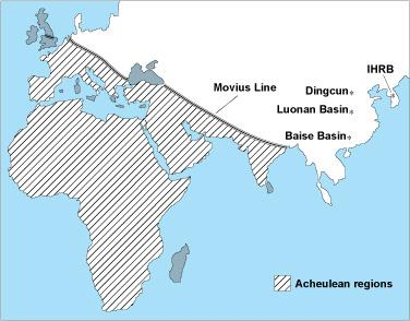 The shaded area represents the region where Homo erectus made fancy tools.